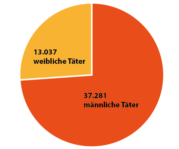 Diagramm Einbruchstatistik Wien